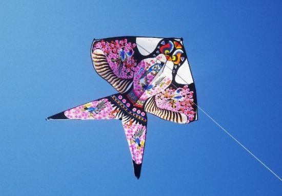 История воздушного змея